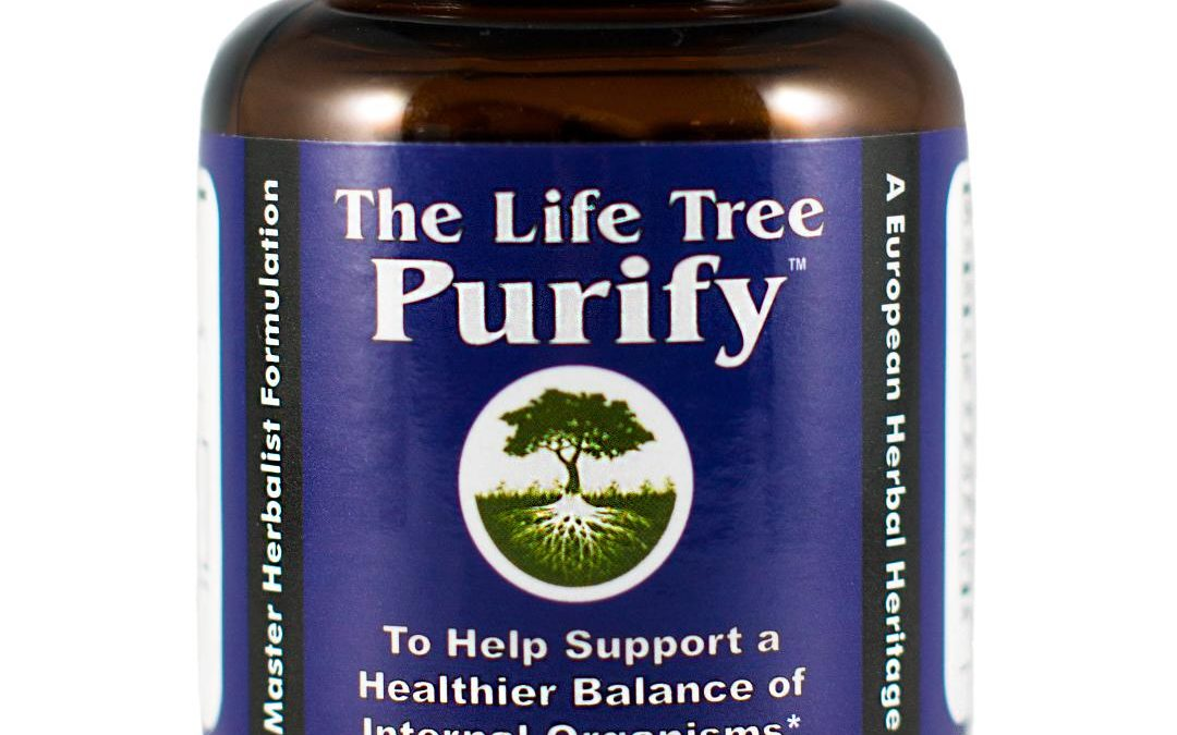 Purify Parasite Intestinal Detox Cleanse Para Clean All Natural Herbal The Life Tree 600mg 60 capsules
